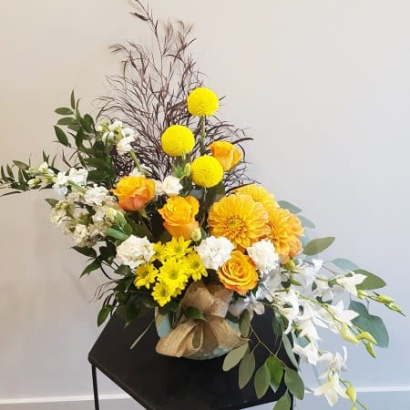 SHARLEEN ARRANGEMENT