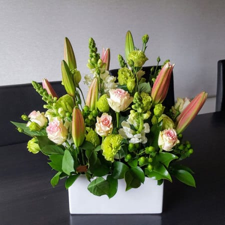 Philamena Arrangement