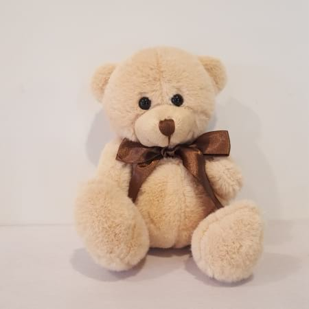 Small Teddy Bear (approx. 13 cm)