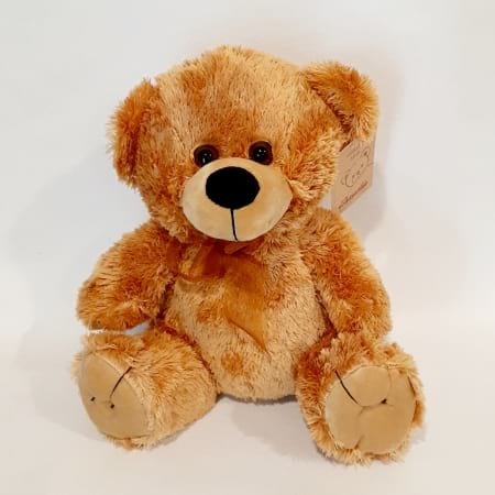 Teddy Bear - Medium (approx. 24cm)