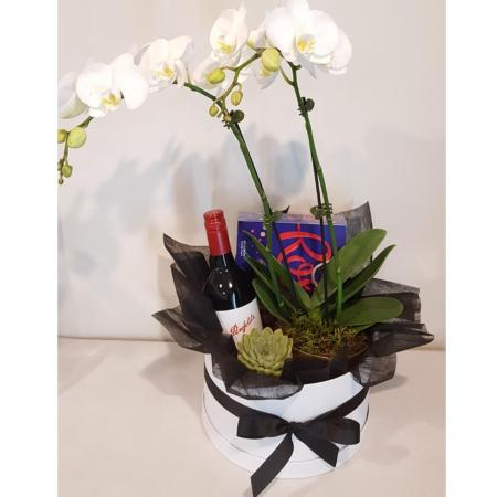 Premium Hamper with Orchid Plant